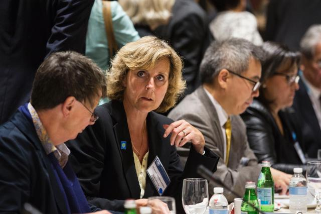 Participation of Connie Hedegaard, Member of the EC, at the 69th plenary session of the United Nations General Assembly
