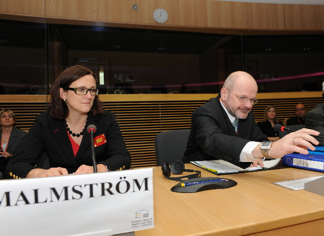 Presentation of the outcome of the consultation of European regions and cities on the Lisbon Strategy after 2010