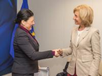 Visit of Isabelle Falque-Pierrotin, Chair of the Article 29 Working Party, to the EC
