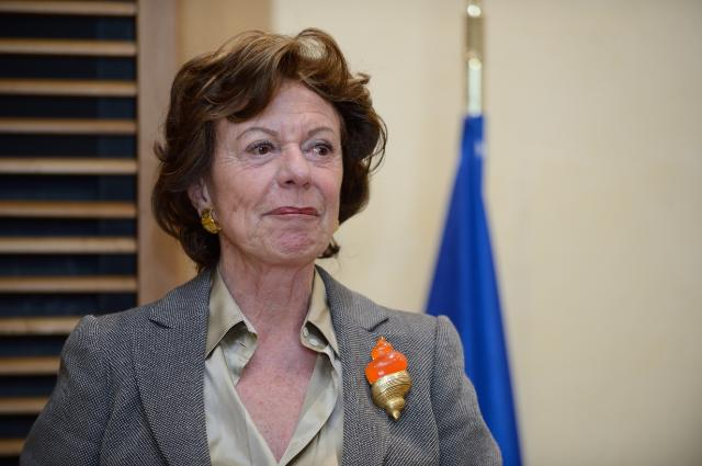 Participation of Neelie Kroes, Vice-President of the EC, in the award ceremony of the 'Equal Opportunities and Diversity Awards' 2014