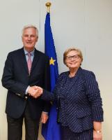 Visit of Frances Fitzgerald, Irish Deputy Prime Minister (Tánaiste), to the EC