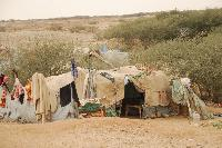 Somali refugees Camp in Yemen