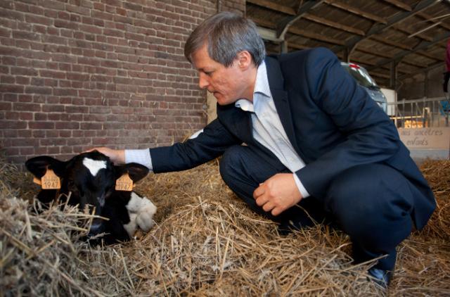 Visite de Dacian Cioloş, membre de la CE, d'une ferme à Ophain-Bois-Seigneur-Isaac