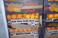 ITALY: 7 tonnes of cigarettes found hidden in a load of oranges were seized at  Ancona Port
