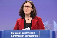 Press conference by Cecilia Malmström, Member of the EC, on the fight against violent extremism