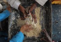 La coopération européenne au développement en Somalie