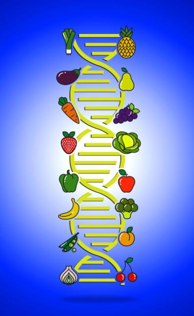 A DNA chain of genetically modified fruits and vegetable