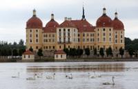 White swans in a lake near the castle of Moritzburg