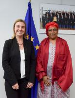 Visit of Kané Aïchatou Boulama, Nigerien Minister for Foreign Affairs, Cooperation, African Integration and Nigeriens abroad, to the EC