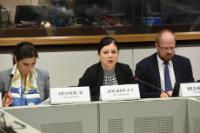 Vĕra Jourová, Member of the EC, at the meeting with consumer organisations on the emission scandal involving the Volkswagen Group