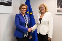 Visit of Liliana Ţuroiu, President of the Romanian Cultural Institute (ICR), to the EC