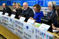 Participation of Frans Timmermans, First Vice-President of the EC, at the ECI DAY 2018 Conference