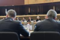 Participation of Maroš Šefčovič, Vice-President of the EC, at the plenary meeting on the European Battery Alliance
