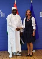 International Conference for the Gambia