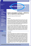 Country Focus - Private consumption in France – Stubbornly high, or responsive to determinants?