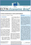 Is China transitioning to a lower growth plateau? © European Union 2013