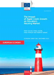 The Impact of Rapid Credit Growth on Slovakia's Housing Market