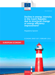 Decline in energy intensity in the Czech Republic: due to structural change or energy efficiency improvement?