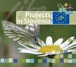 20 years of project in Slovenia