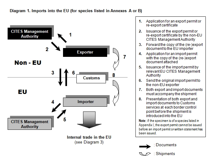 Export procedure
