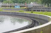 Treating wastewater locally
