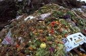 'Waste-eating robot' could help reduce biowaste mountain