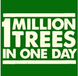 09.01.13 1 million trees in 1 day