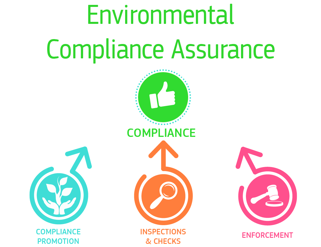 Commission Action Plan on environmental compliance and governance