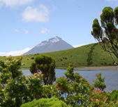 Azores. Pico Island. Photo Pedro Raposeiro, Universidade dos Açores