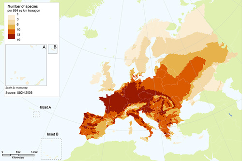 Species richness of European amphibians