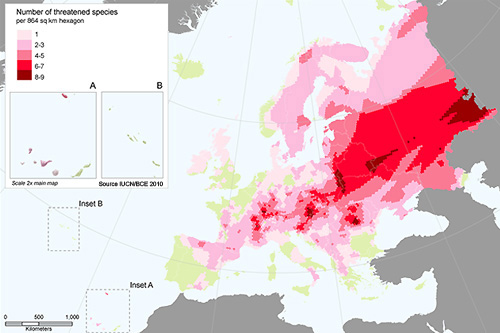 Distribution of threatened butterflies in Europe
