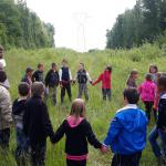 Creating green corridors for biodiversity under high-tension lines - Belgium and France