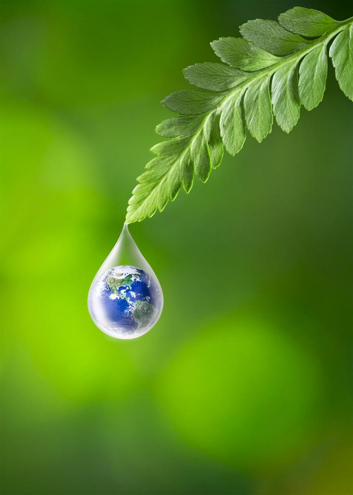 Image © Khanthachai C / Shutterstock.com