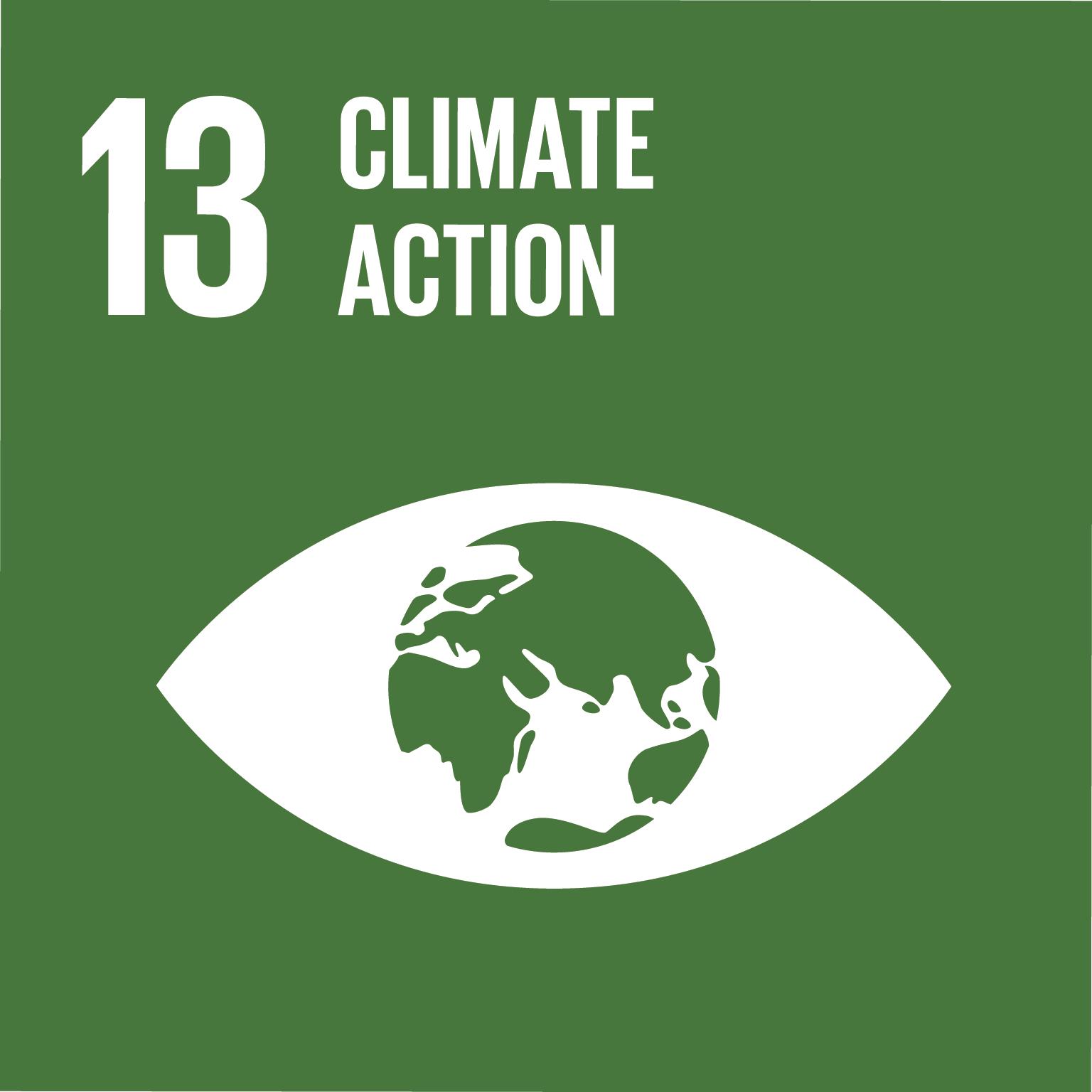 SDG Goal 13 'Climate action' © UN