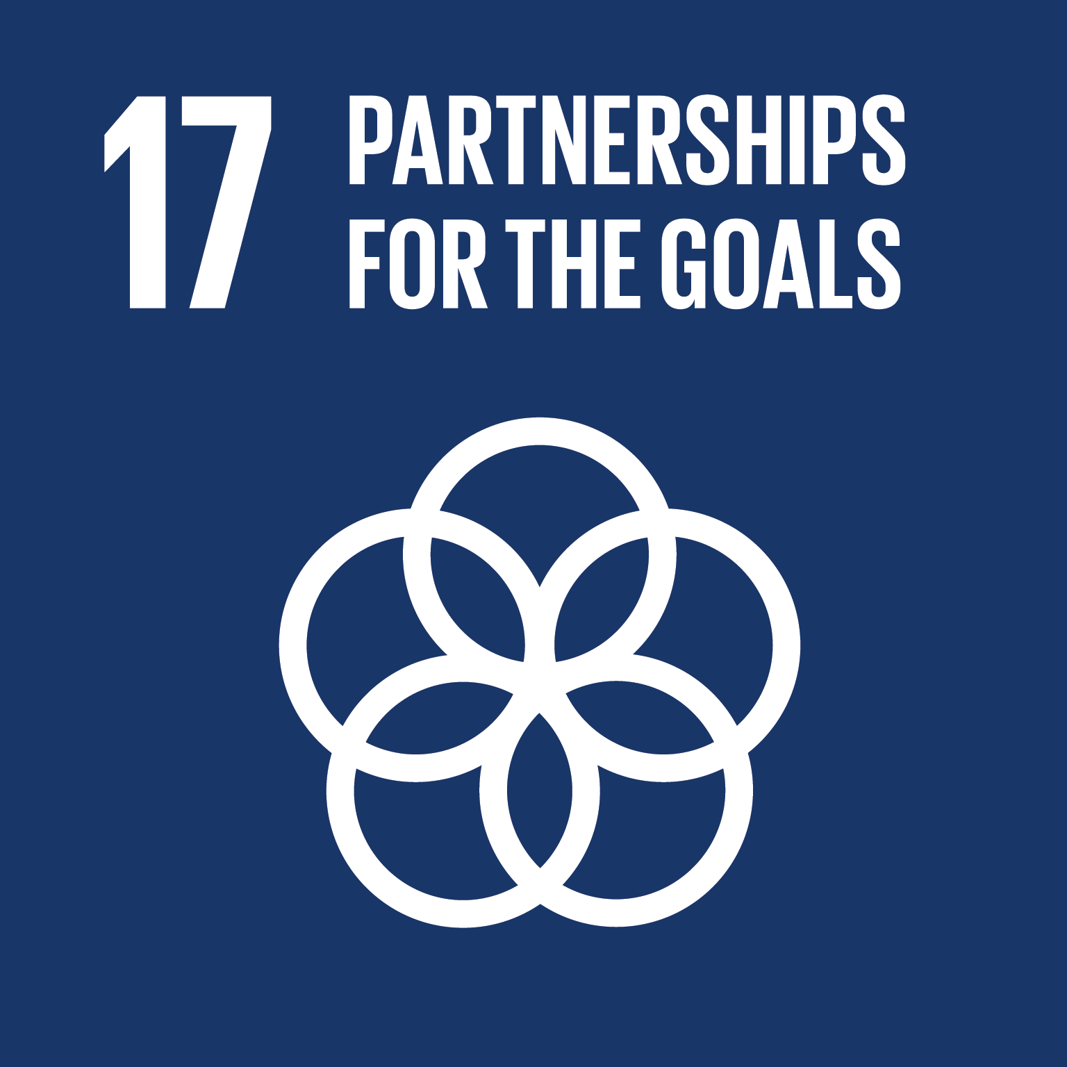 SDG Goal 17 'Partnership for the goals' © UN
