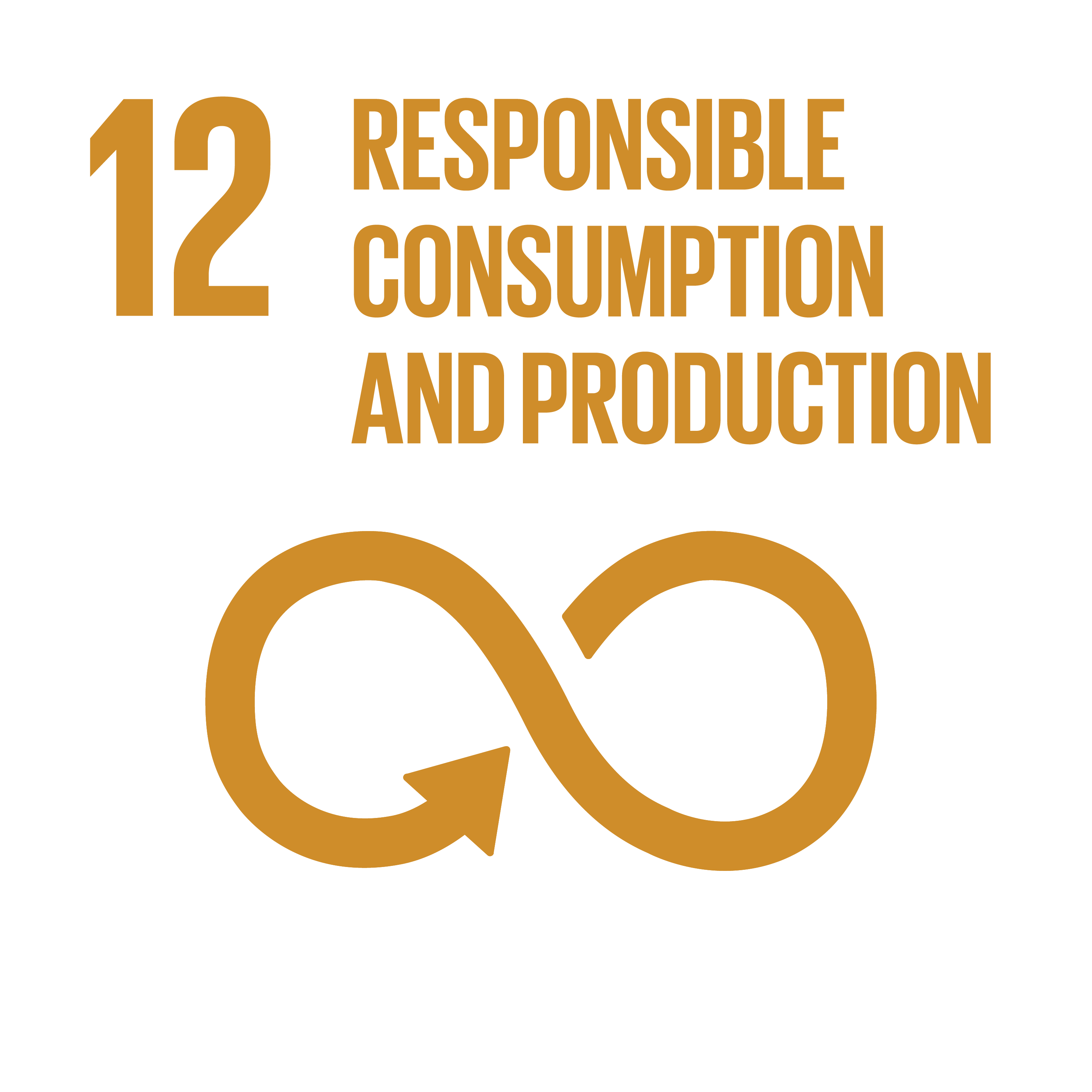 Image SDG 12; © UN