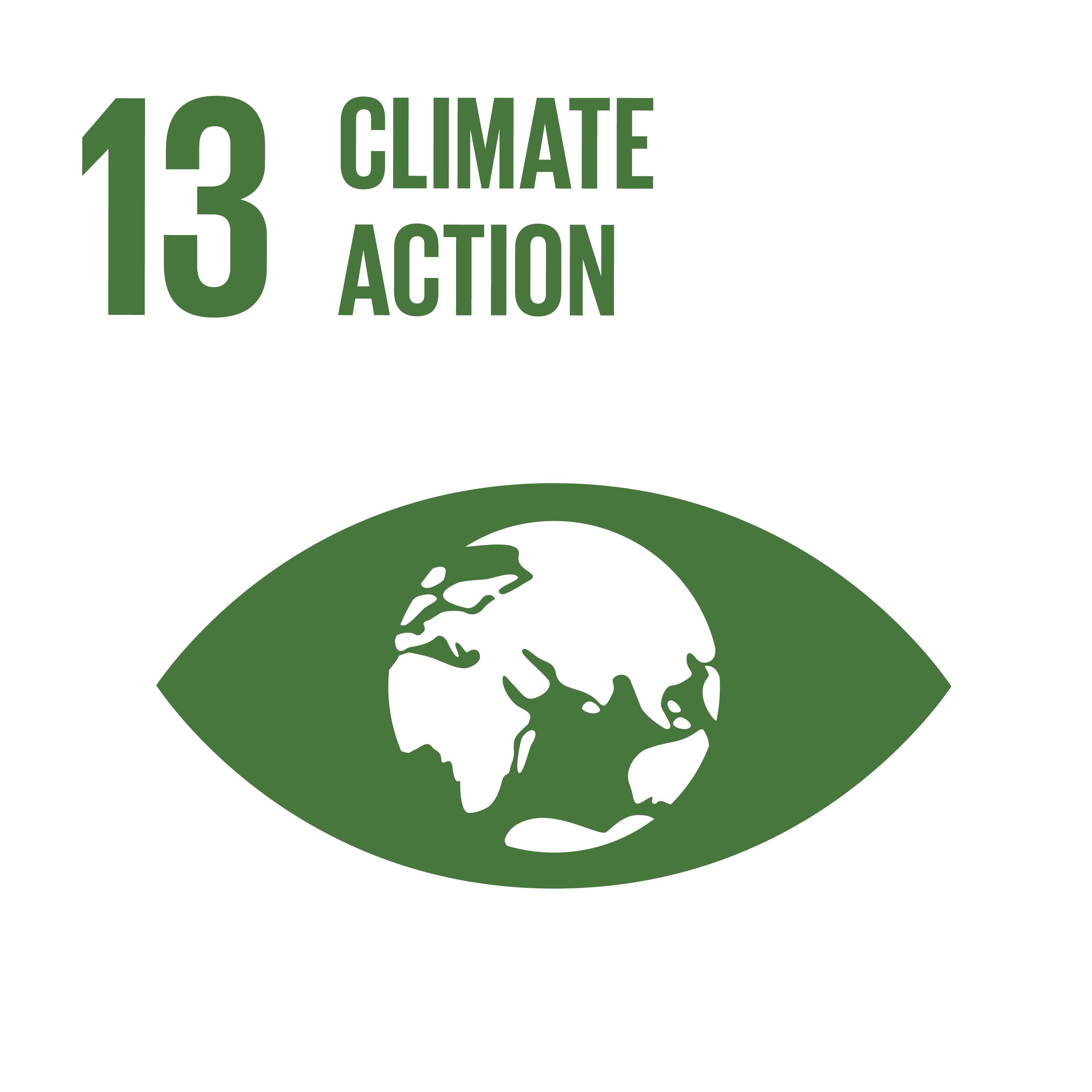 Image SDG 13; © UN