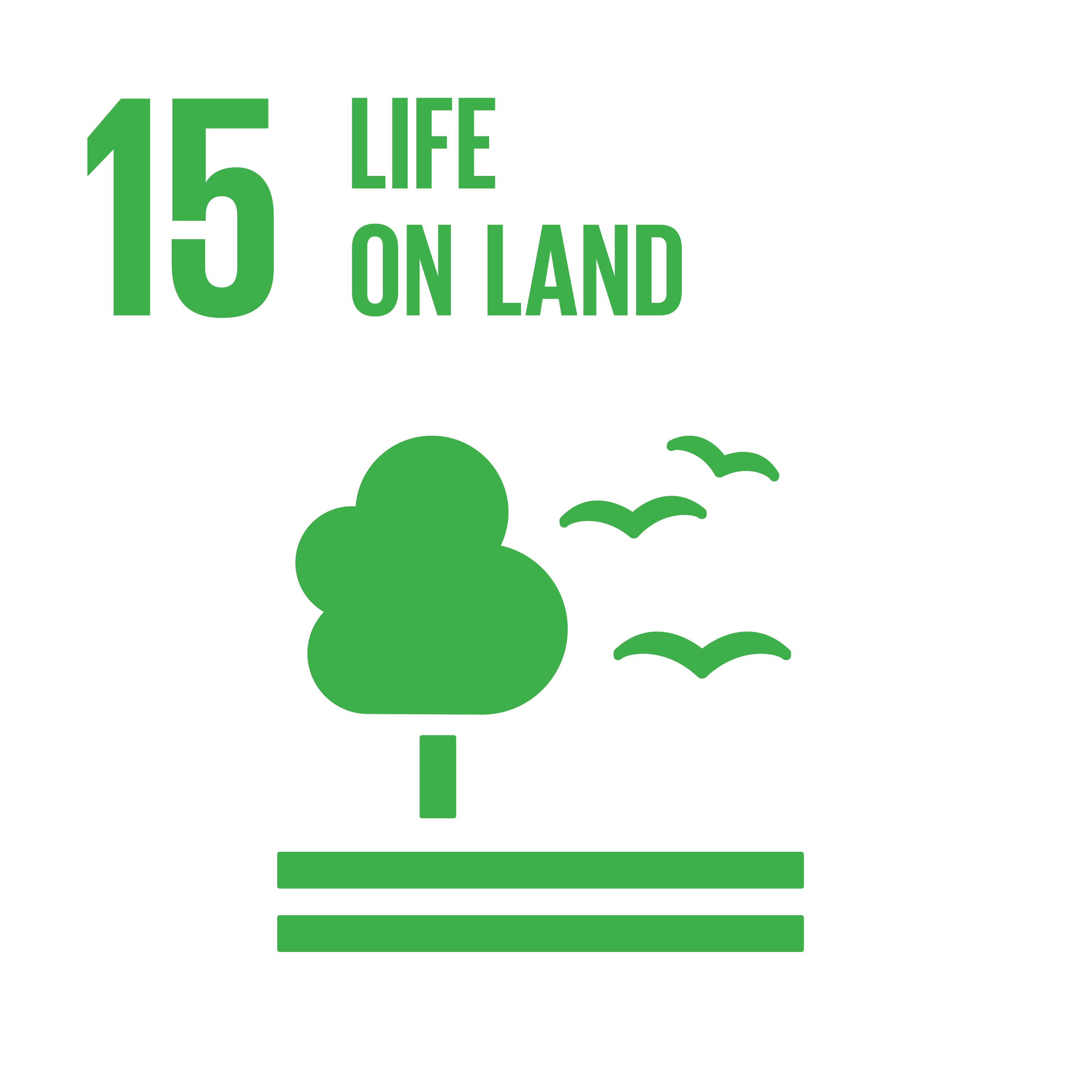 Image SDG 15; © UN