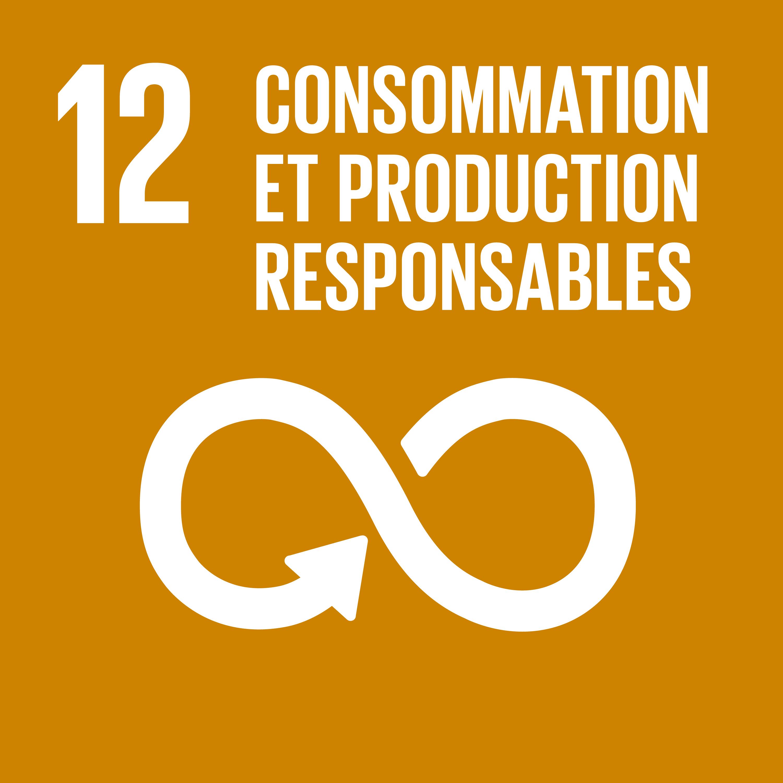 Objectif 12: Consommation et production responsables © Nations unies