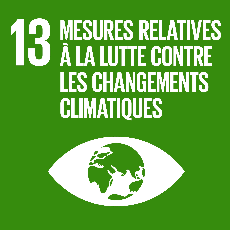 Objectif 13: Lutte contre le changement climatique © Nations unies