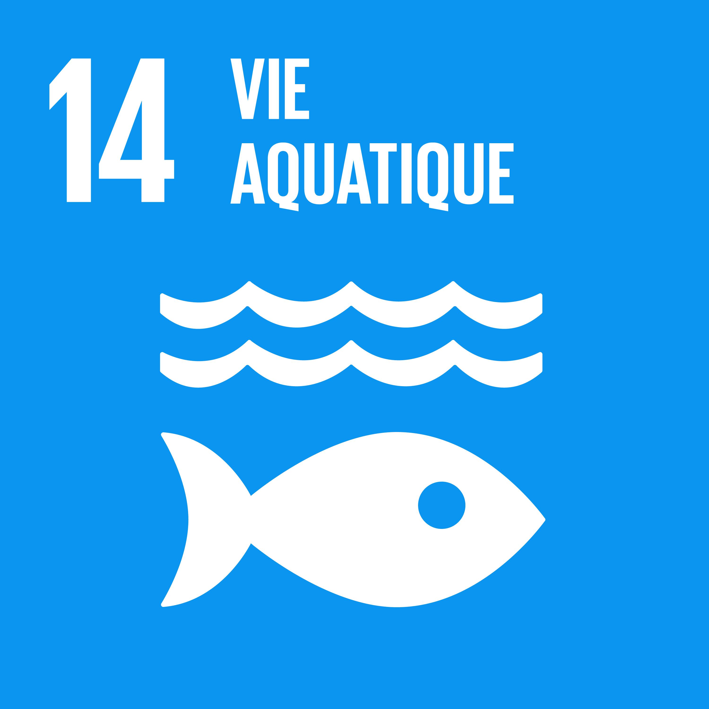 Objectif 14: Vie aquatique © Nations unies