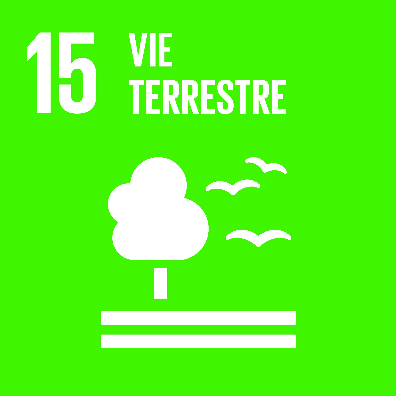 Objectif 15: Vie terrestre © Nations unies
