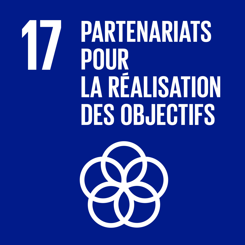 Objectif 17: Partenariats pour la réalisation des objectifs © Nations unies