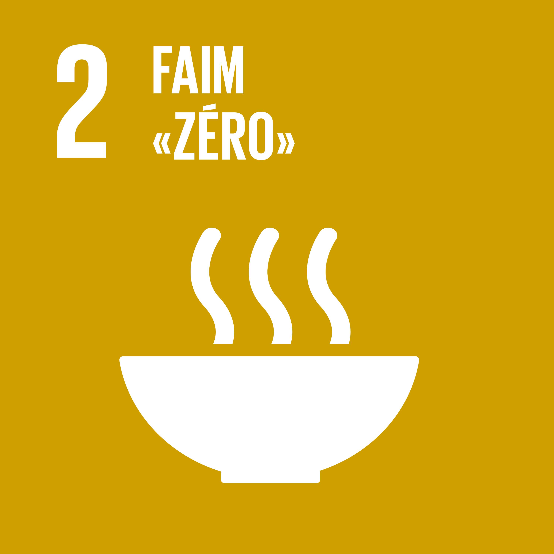 Objectif 2: Faim zéro © Nations unies