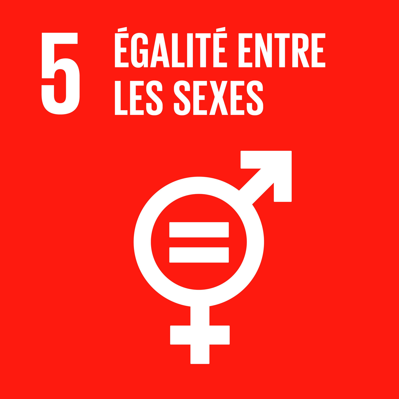 Objectif 5: Égalité entre les sexes © Nations unies