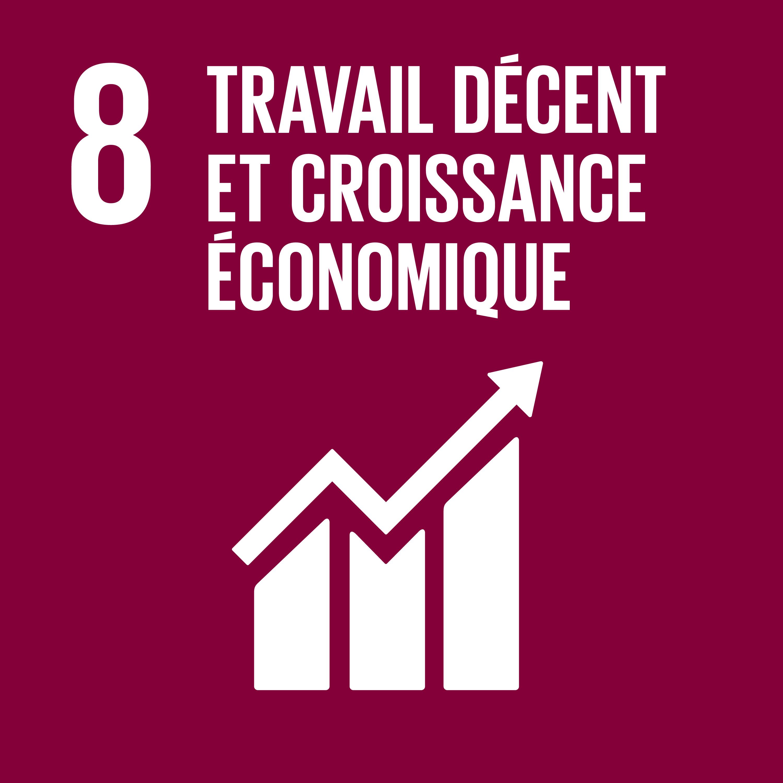 Objectif 8: Travail décent et croissance économique © Nations unies