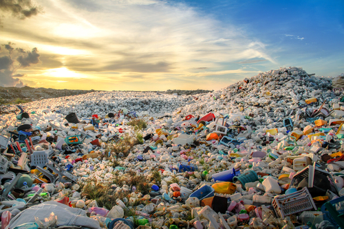 Image illustrating waste © Mohamed Abdulraheem / Shutterstock.com