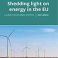 Interactive publication on energy