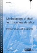 Methodology of short-term business statistics - Interpretation and Guidelines
