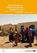 Technical Report on Statistics of Internally Displaced Persons